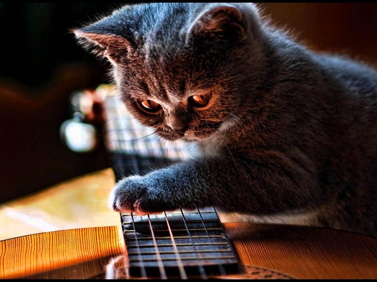 Перебор - обучение игры перебором на гитаре